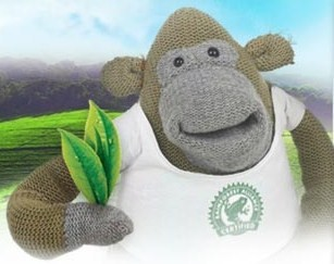 pg tips monkey2