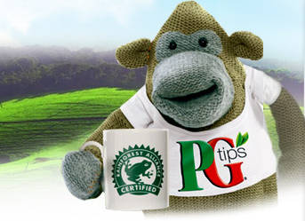 http://justpgtips.com/wp-content/uploads/2011/11/pg-tips-monkey-sustainability-v1.jpg