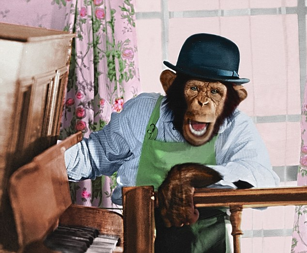 do you know the most famous name in the chimp commercials